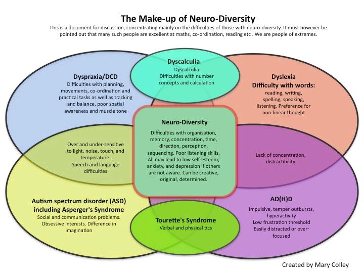 Problem solving using diversity essay